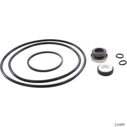 Pump Rebuild Kit, Jacuzzi Magnum, with Viton Shaft Seal