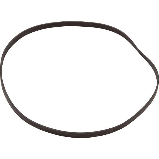 910007 Gasket, WMC/PPC AT Series Pump, Seal Plate replaces 5150-12, 621167
