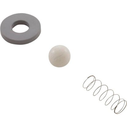 CR-3 Rebuild Kit, Mazzei, Check Valve #978/C83P replaces 2164-01, 605889