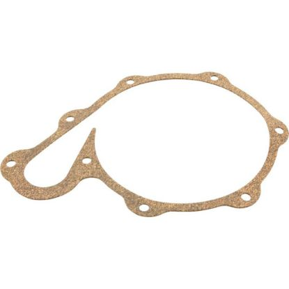 PS20-21 Gasket
